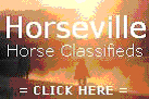 Horses For Sale at Horseville